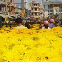 Tet 's  Flower Market in Tra Vinh City